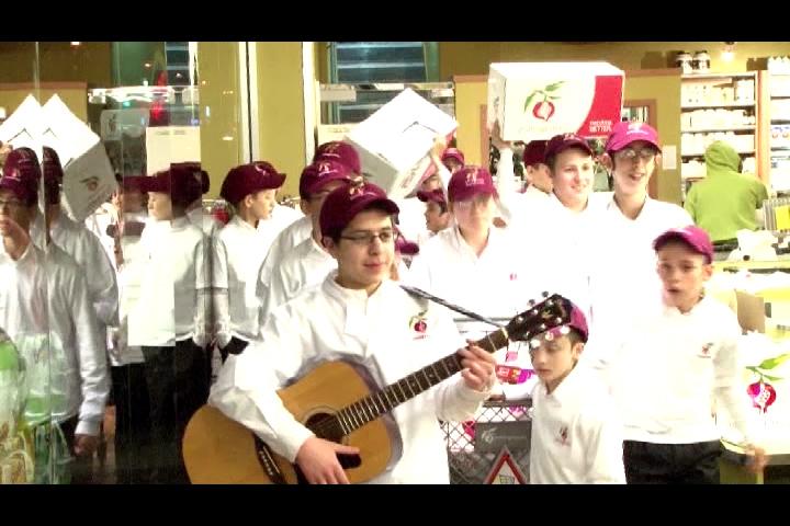 POMEGRANATE YAVO MUSIC VIDEO (2008)