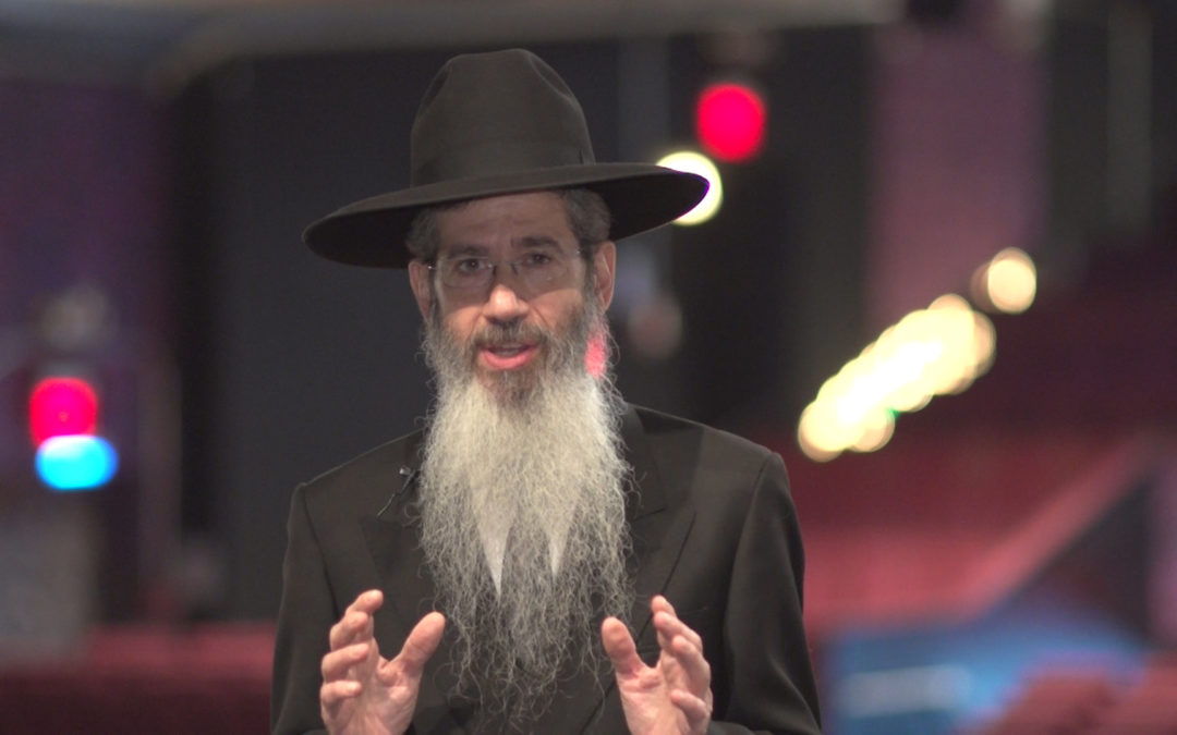 RABBI DOVID GOLDWASSER (2012)